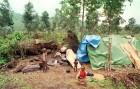 Children made homeless during the civil war in Rwanda.