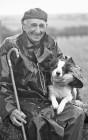 Alf Little and Misty at Okehampton sheepdog trials.